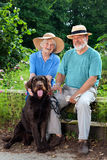 Senior Couple at the Garden with their Dog Pet Stock Photography