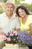 Senior Couple Gardening Together Stock Photos