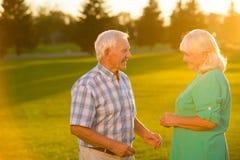 Senior couple on grass background. Stock Photo