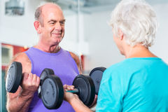 Senior couple in gym lifting dumbbell Stock Photos