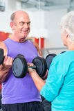 Senior couple in gym lifting dumbbell Stock Photo