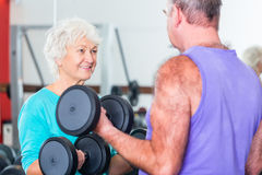 Senior couple in gym lifting dumbbell Stock Image