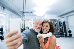 Senior couple in gym resting, taking selfie with smartphone Stock Photos