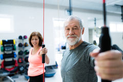 Senior couple in gym working out with vibration bars Stock Image