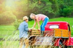 Senior couple harvesting apples, loading them into vintage car Stock Image