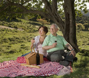 Senior couple having a picnic. Senior couple drinking wine in a picnic Stock Photos