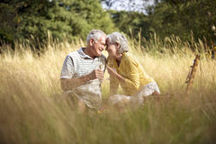 A senior couple having a picnic, drinking champagne Royalty Free Stock Image
