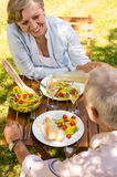 Senior couple having picnic in the garden Stock Photos