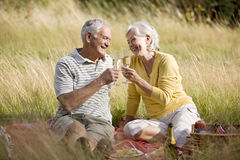 A senior couple having a picnic, making a toast Royalty Free Stock Image