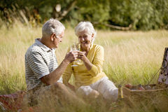 A senior couple having a picnic, making a toast Royalty Free Stock Photo
