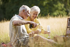 A senior couple having a picnic, man pouring champagne royalty free stock image