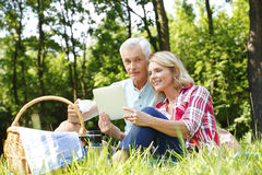 Senior couple having picnic Stock Image