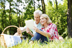 Senior couple having picnic Royalty Free Stock Image