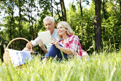 Senior couple having picnic Royalty Free Stock Photography