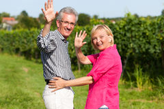 Senior couple having walk Royalty Free Stock Photo