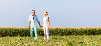 Senior couple having walk on meadow Stock Image