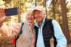 Senior couple on hike in a forest taking a selfie, USA Royalty Free Stock Photos
