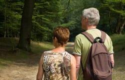 Senior couple hiking -2. Senior couple hiking in the woods stock photos