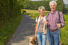 Senior couple hiking with dog Royalty Free Stock Photos