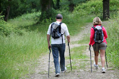 Senior couple hiking in forest Stock Photography