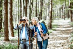 Senior couple hiking in the forest stock images