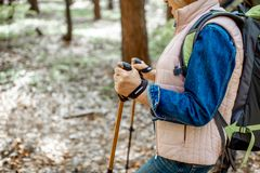 Senior couple hiking in the forest royalty free stock image