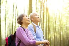 Senior Couple hiking in green bamboo. Forest Royalty Free Stock Photos