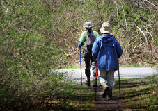 Senior Couple Hiking with Walking Sticks. An older couple walks along a trail using walking sticks Stock Photos