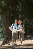 Senior couple hiking on woodland trail, man holding map, woman using hiking pole, smiling, front view. Senior couple hiking on woodland trail, men holding map stock photos