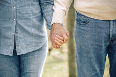 Senior couple holding hands over nature background Stock Photos