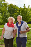 Senior couple holding hands in park Royalty Free Stock Photo