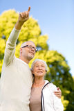 Senior couple hugging in park Royalty Free Stock Photography