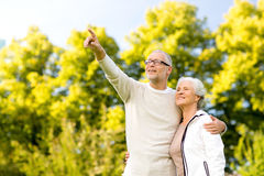 Senior couple hugging in park Stock Photography