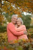 Senior couple hugging   in the park Royalty Free Stock Photo