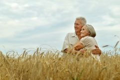 Portrait of senior couple resting at summer field stock image