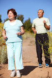 Senior couple jogging Royalty Free Stock Photos