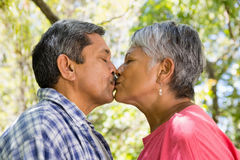 Senior couple kissing each other in garden. On a sunny day Stock Photography