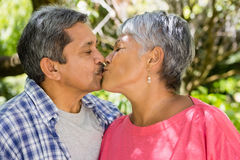 Senior couple kissing each other in garden. On a sunny day Royalty Free Stock Photography