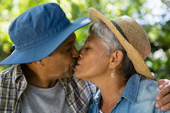 Senior couple kissing each other in park. During summer Stock Image