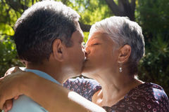 Senior couple kissing each other in park. During summer Royalty Free Stock Images