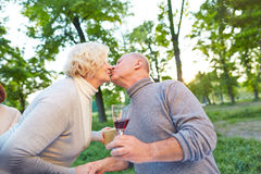 Senior couple kissing in a garden. At a birthday party in summer Royalty Free Stock Photography