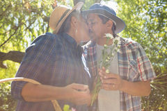 Senior couple kissing in garden with flower basket. In the park Royalty Free Stock Images