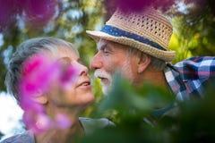 Senior couple kissing in the garden Royalty Free Stock Photos