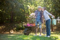 Senior couple kissing in the garden Stock Photos