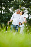 Senior couple kissing while hiking in summer. Happy senior couple kissing while hiking in summer in nature Royalty Free Stock Image