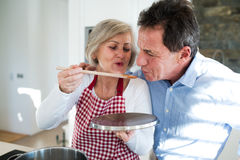 Senior couple in the kitchen cooking together. Royalty Free Stock Images