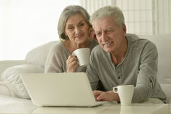 Senior couple  with laptop. Portrait of a senior couple with laptop Stock Images