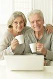 Senior couple  with laptop Stock Photos