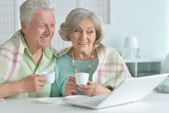 Senior couple  with laptop Royalty Free Stock Image