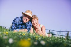 Senior couple laying on the grassfield. Smiling. Happy mature couple Royalty Free Stock Photo